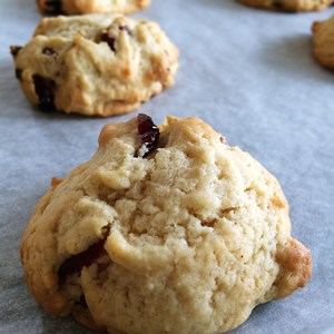 Easy Homemade Dried Cranberry Cookies Recipe From Scratch