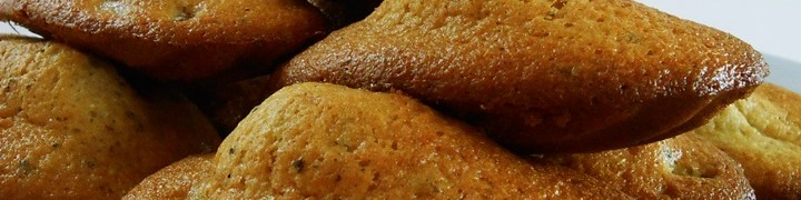Madeleine Cookie Recipe | kipkitchen.com #recipe #food #chocolate #paris